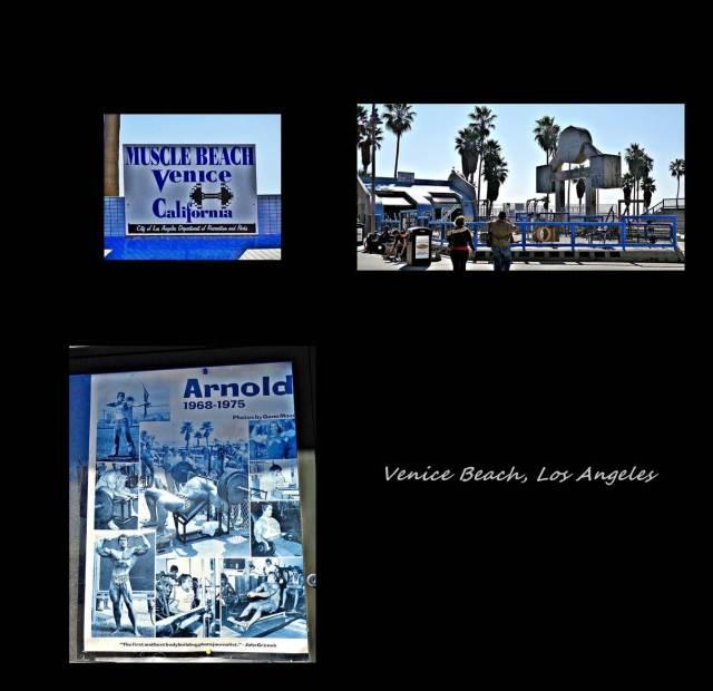29 -Venice beach 2 (Large)