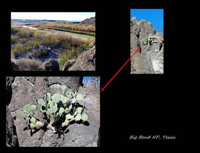 3 - Big Bend 2 (Large)