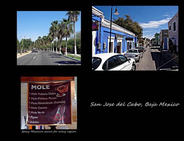 14 - San Jose del Cabo (Large)