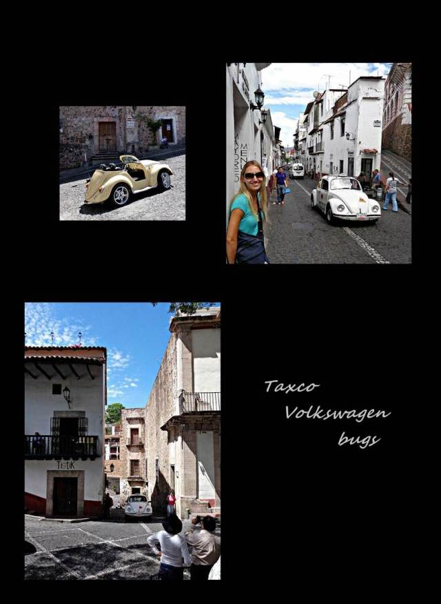 31 - Taxco bugs (Large)