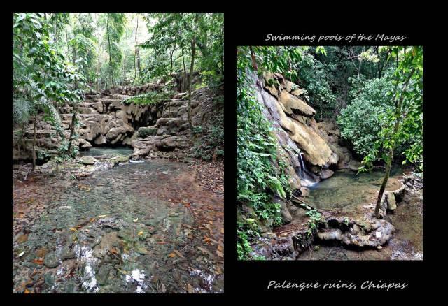 33 - Palenque (Large)