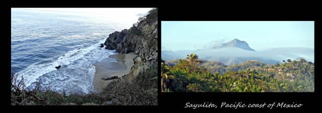 36 - Sayulita (Large)