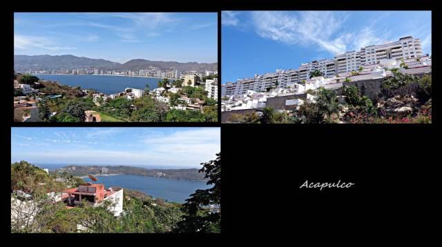 41 - Acapulco (Large)