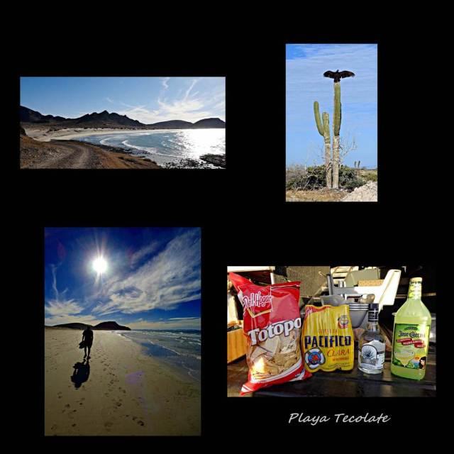 5 - Playa Tecolote (Large)