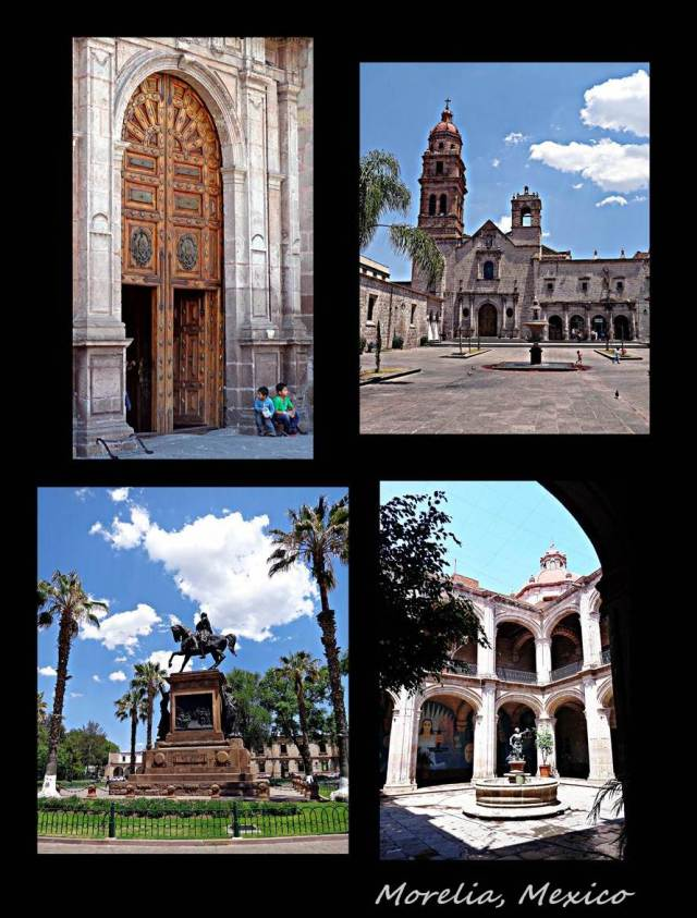 53 - More morelia (Large)