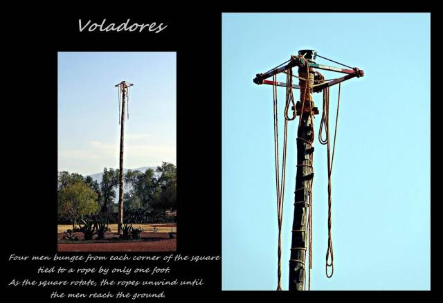 6 - Voladores (Large)