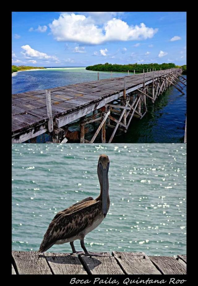 7 - Boca Paila (Large)