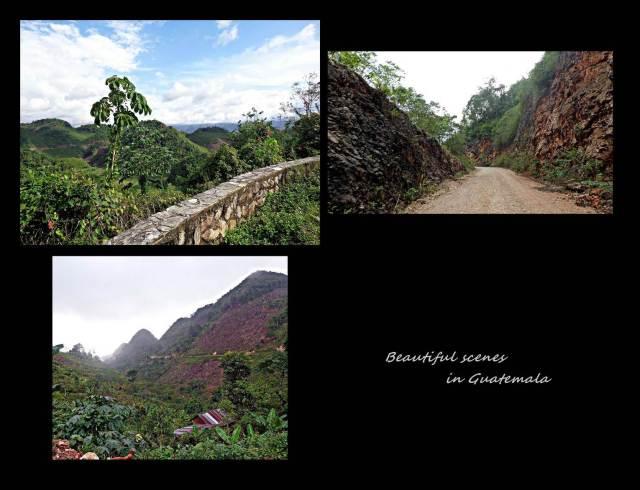 11 - Beautiful Guatemala (Large)