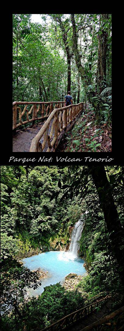9 - Parque national Volcan Tenorio (Large)