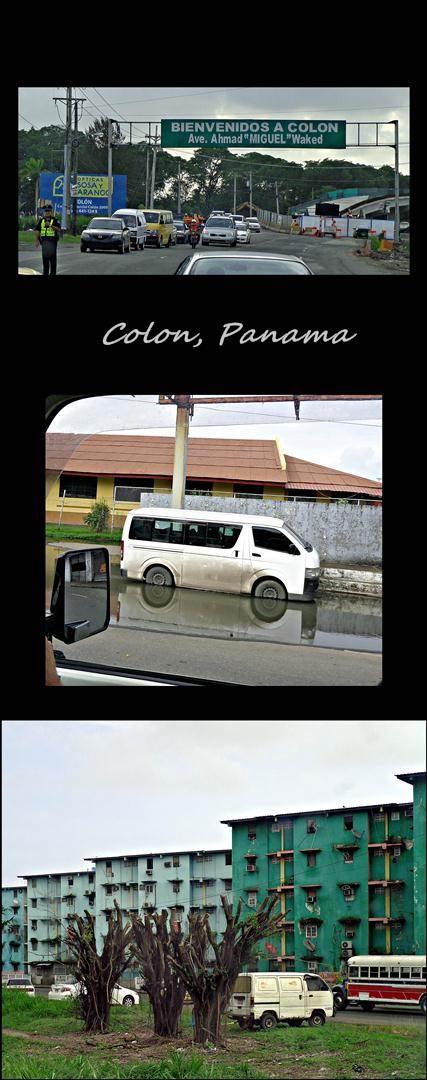 11 - Colon (Large)