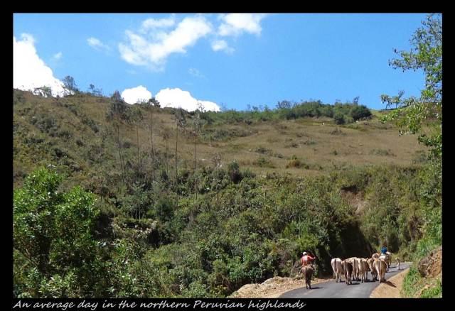 11 - Around Leimebamba (Large)