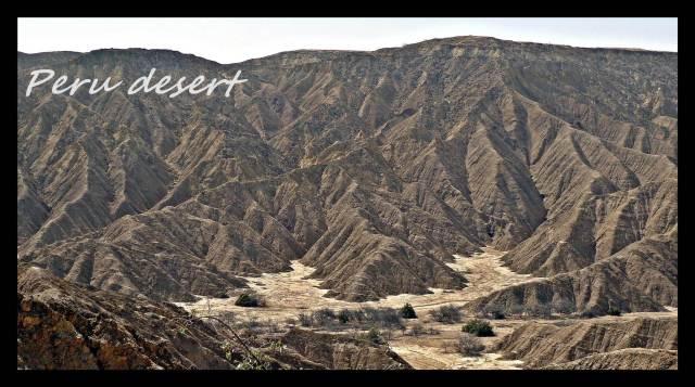 2 - Desert (Large)