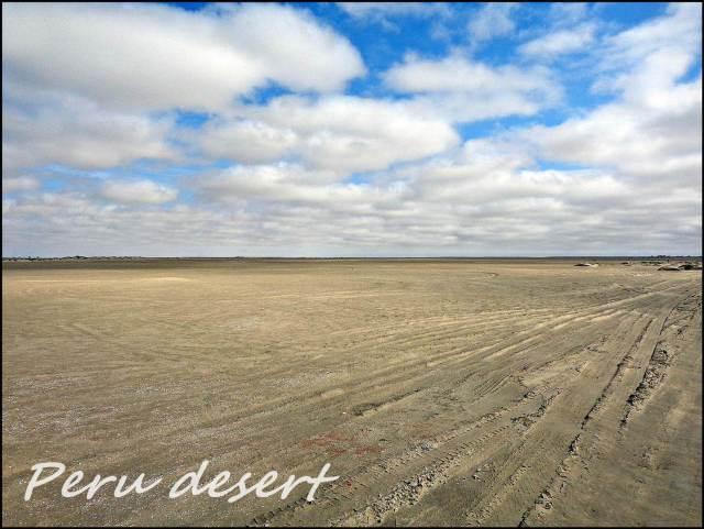2a - Desert (Large)