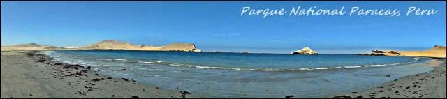 46 - Paracas NP (Large)