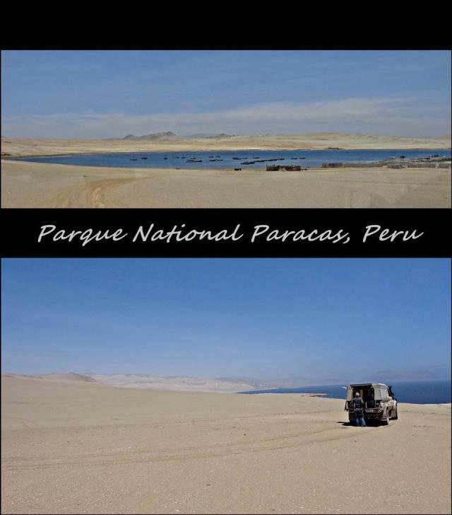 47 - Paracas NP (Large)