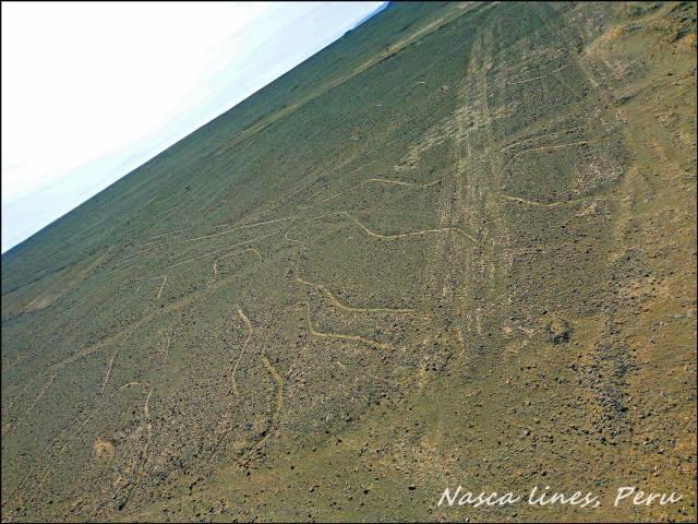 48 - Nasca lines (Large)