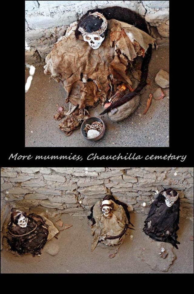 51 - Mummies inthe desert (Large)