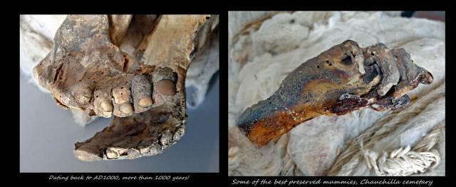 55 - Mummies in desert (Large)