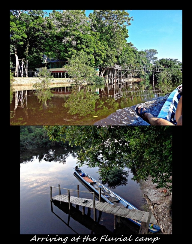 27 - Fluvial tours camping (Large)