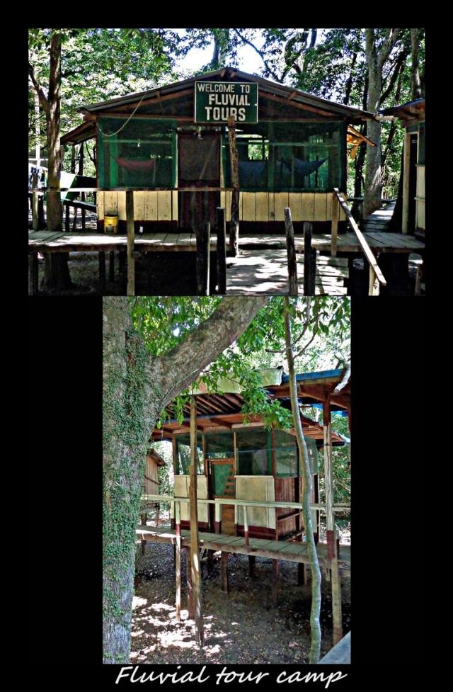 38 - Fluvial campsite (Large)
