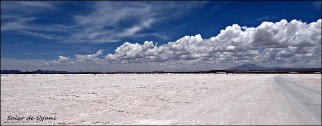 75 - Salt flats (Large)