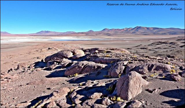 85 - SW bolivia (Large)