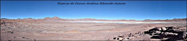 87 - sw bolivia (Large)