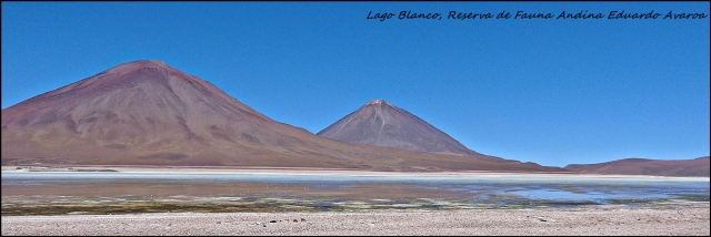 91 - laguna blanco (Large)
