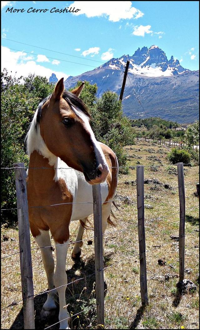 119 - More Cerro Castillo (Large)