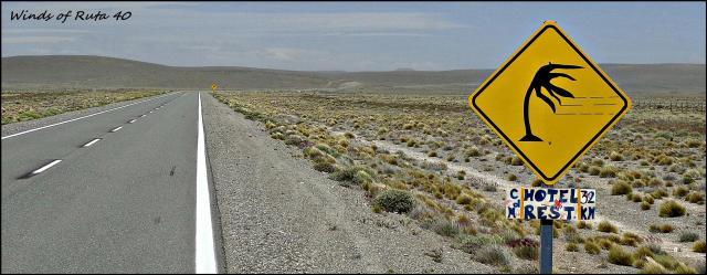 134 - Patagonian wind (Large)