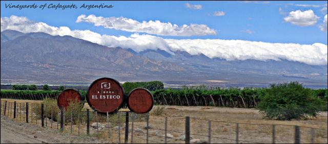 16 - Winelands of Cafayate (Large)