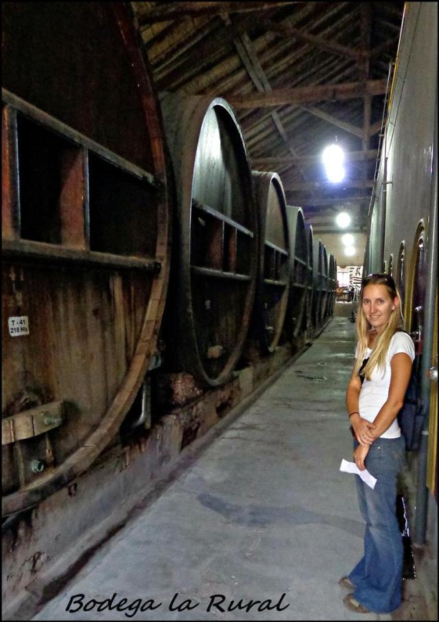 43 - Cellars (Large)