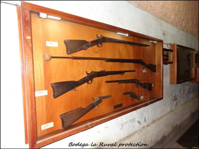 44 - Guns for protection (Large)